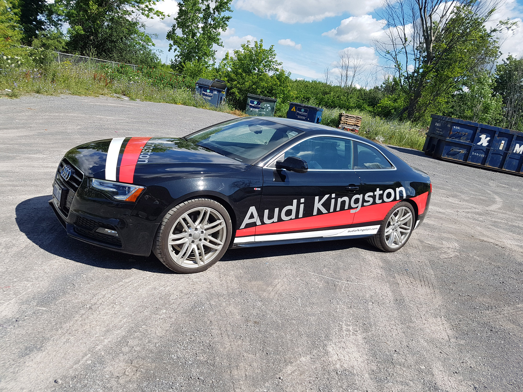 Audi Kingston